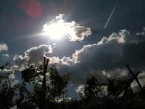Sonne, Wolken & Reben